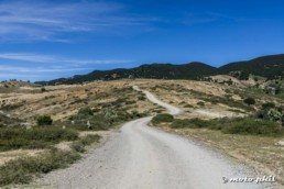 Mexican backcountry dirt road