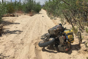 Mule Pack Panniers on the DR650