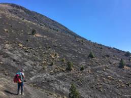 Acatenango western trail on top