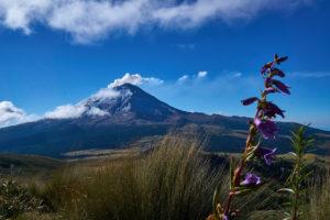 Popocatepetl, Mexicos most famous Volcano at sunrise.